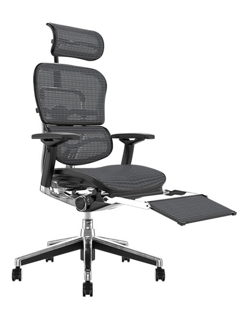 Ergohuman Grey Mesh Office Chair with Leg Rest and Head Rest