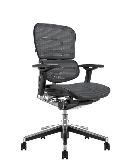 Ergohuman Mesh Office Chair - Grey Mesh