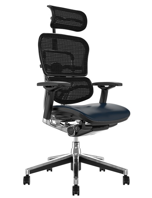 Ergohuman Elite Black Leather Seat Black Mesh Back with Head Rest