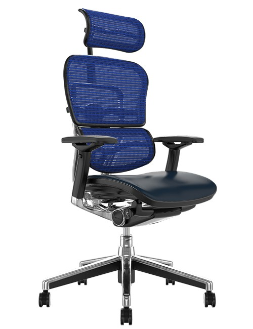 Ergohuman Elite Black Leather Seat Blue Mesh Back with Head Rest