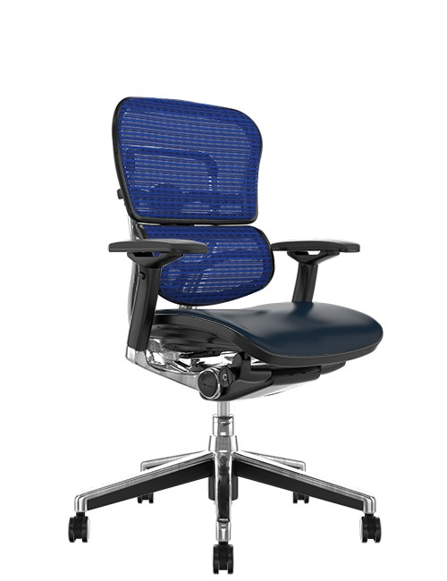 Ergohuman Elite Leather Seat Blue Mesh Back no Head Rest