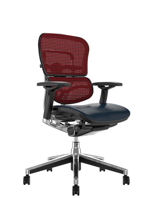 Ergohuman Elite Leather Seat Burgundy Mesh Back no Head Rest