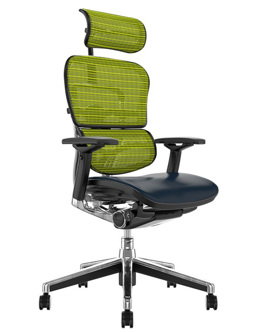 Ergohuman Elite Black Leather Seat Green Mesh Back with Head