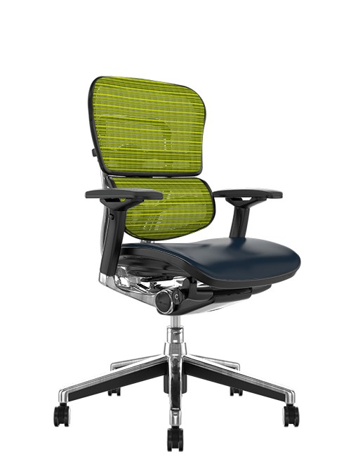 Ergohuman Elite Leather Seat Green Mesh Back no Head Rest