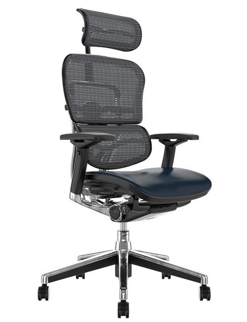 Ergohuman Elite Black Leather Seat Grey Mesh Back with Head