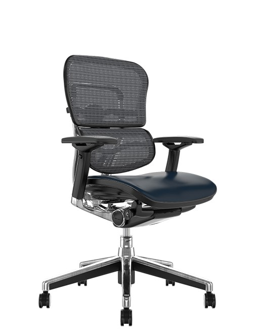 Ergohuman Elite Leather Seat Grey Mesh Back no Head Rest