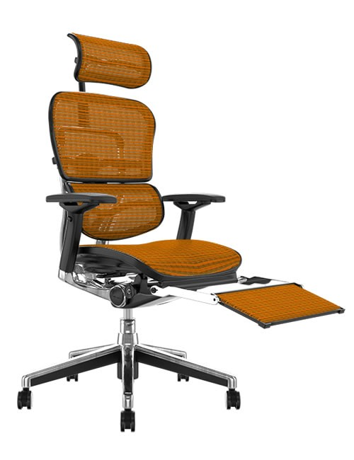 Ergohuman Elite Orange Mesh Office Chair with Head Rest