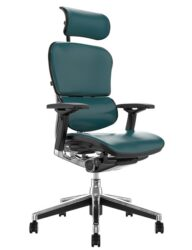 Ergohuman Elite Teal Leather Office Chair with Head Rest