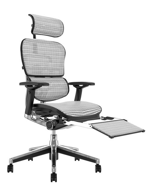Ergohuman White Mesh Office Chair with Leg Rest and Head Rest