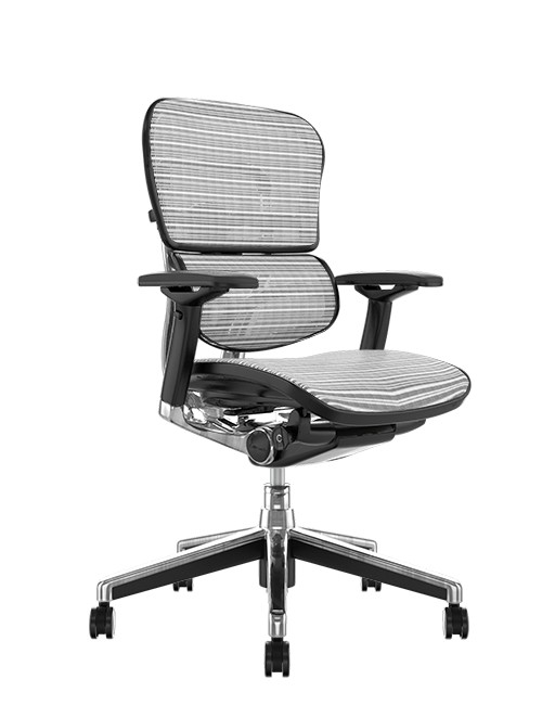 Ergohuman Mesh Office Chair -White Mesh