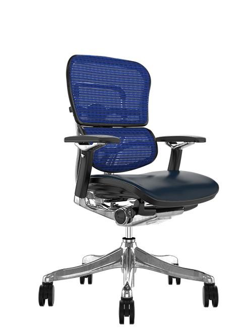 Ergohuman Plus Luxury Black Leather Seat Blue Mesh Back
