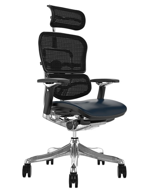 Ergohuman Plus Luxury Leather Seat, Black Mesh Back with Head