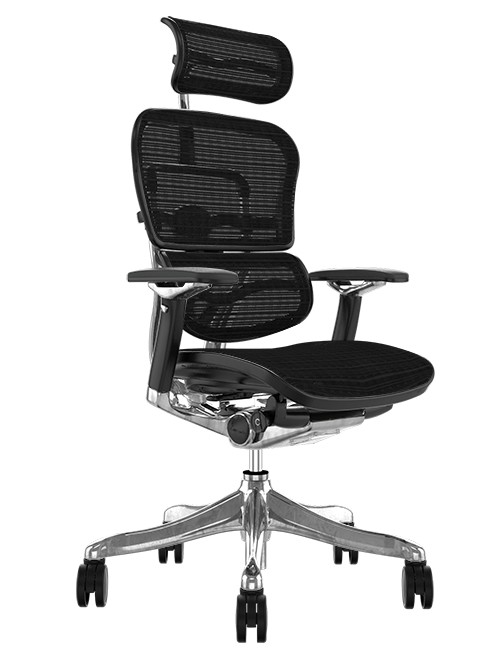 Ergohuman Plus Luxury Black Mesh Office Chair with Head Rest
