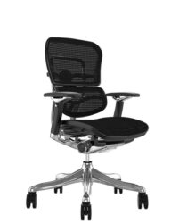Ergohuman Plus Luxury Black Mesh no Head Rest