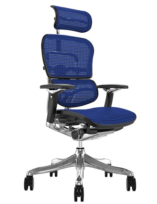 Ergohuman Plus Luxury Blue Mesh Office Chair with Head Rest