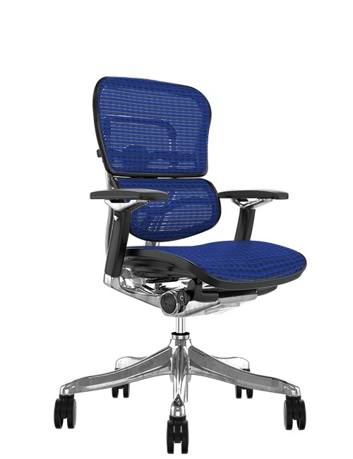 Ergohuman Plus Luxury Blue Mesh no Head Rest