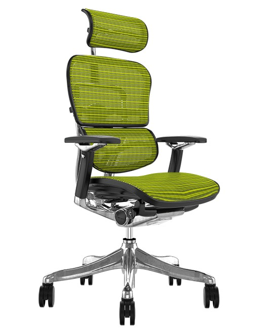 Ergohuman Plus Luxury Green Mesh Office Chair with Head Rest