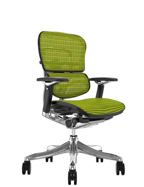 Ergohuman Plus Luxury Green Mesh no Head Rest