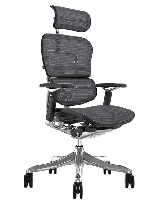 Ergohuman Plus Luxury Grey Mesh Office Chair with Head Rest