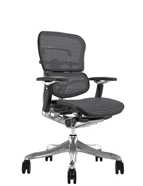 Ergohuman Plus Luxury Grey Mesh no Head Rest