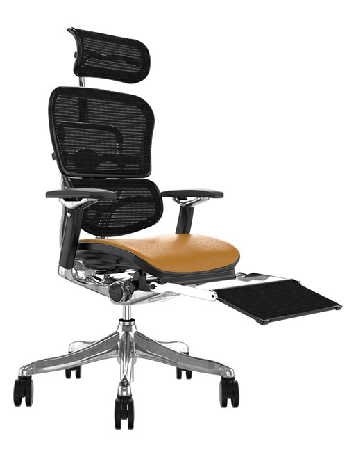 Ergohuman Plus Luxury Latte Leather Seat, Black mesh Back with Head Rest and Leg Rest