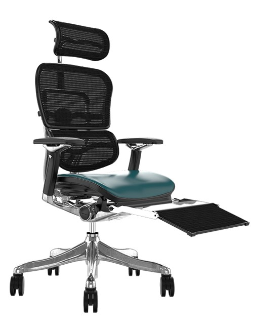 Ergohuman Plus Luxury Teal Leather Seat, Black mesh Back with Head Rest and Leg Rest