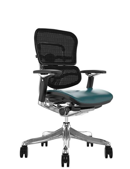 Ergohuman Plus Luxury Teal Leather Seat Mesh Back
