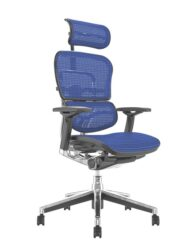 Ergohuman Office Chairs Blue Mesh
