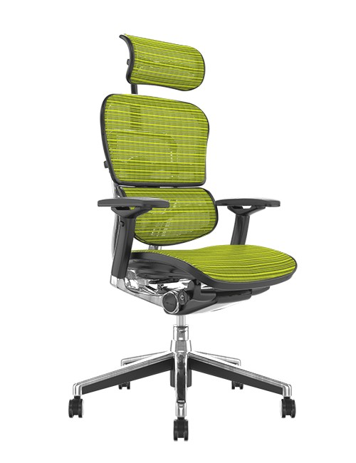 Ergohuman Office Chairs Green Mesh