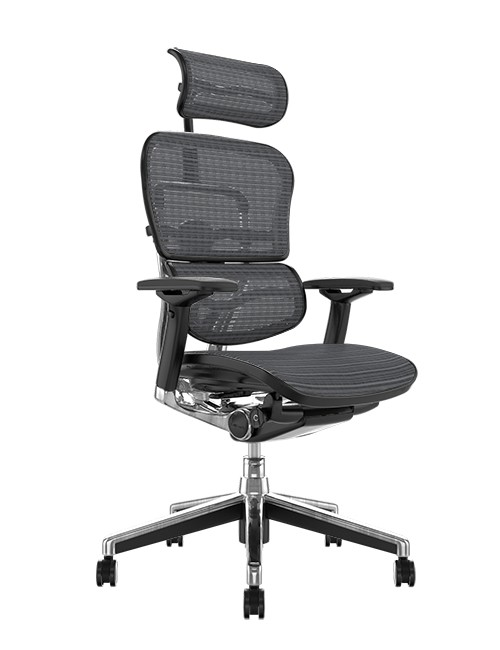 Ergohuman Office Chairs Grey Mesh