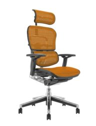 Ergohuman Office Chairs Orange Mesh