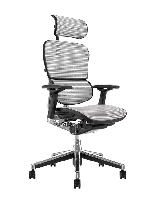 Ergohuman Office Chairs White Mesh