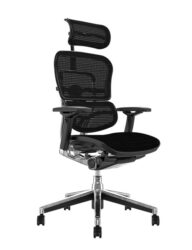 Ergohuman Mesh High Back Office Chair