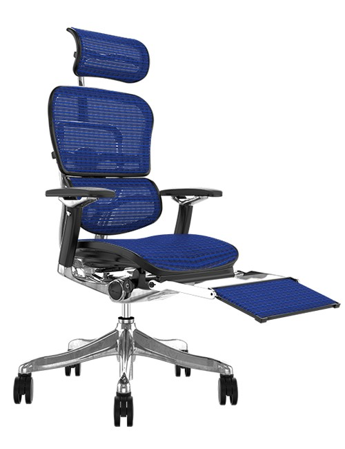 Ergohuman Plus Luxury Blue Mesh with Leg Rest and Head Rest