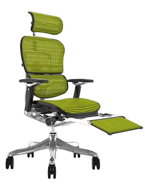 Ergohuman Plus Luxury Green Mesh with Leg Rest and Head Rest
