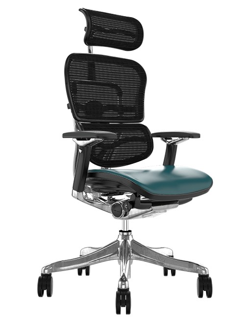 Ergohuman Plus Luxury Teal Leather Seat, Black Mesh Back with Head