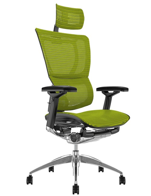 Mirus Green Mesh Office Chair, Polished Frame with Head Rest