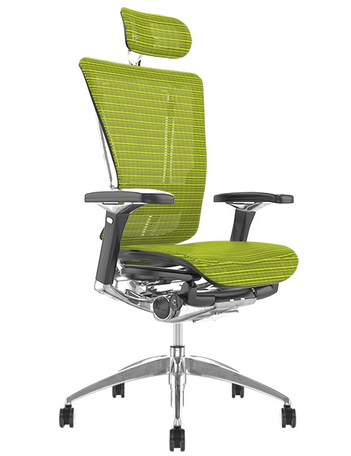 Nefil Ergonomic Green Mesh Office Chair with Head Rest